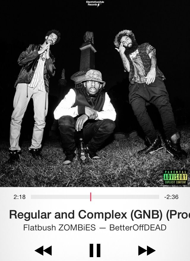 Learn These Flatbush Zombies Better Off Dead Zip {Swypeout}