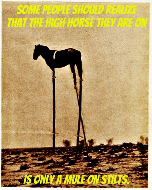 high horse quotes