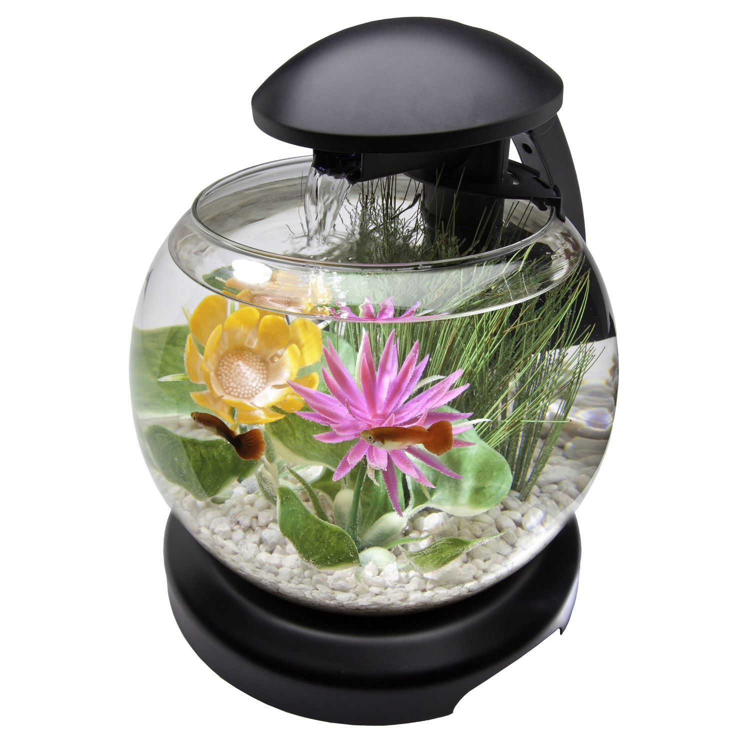 1 8 Gallon Compelling Globe Shaped Aquarium Kit Featuring An Advanced Led Lighting System Integrated Whisper Pow Aquarium Kit Tanked Aquariums Betta Fish Tank