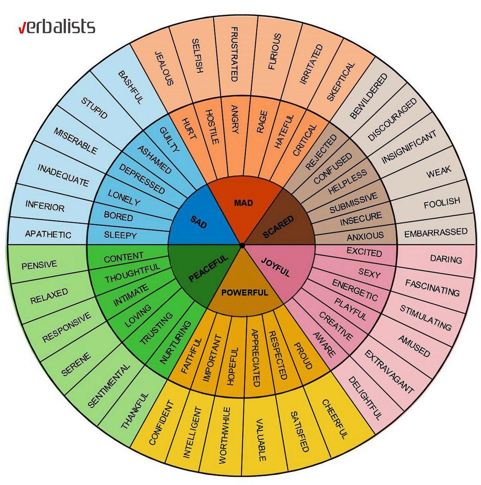 Kaitlin Robbs Vocabulary Wheel