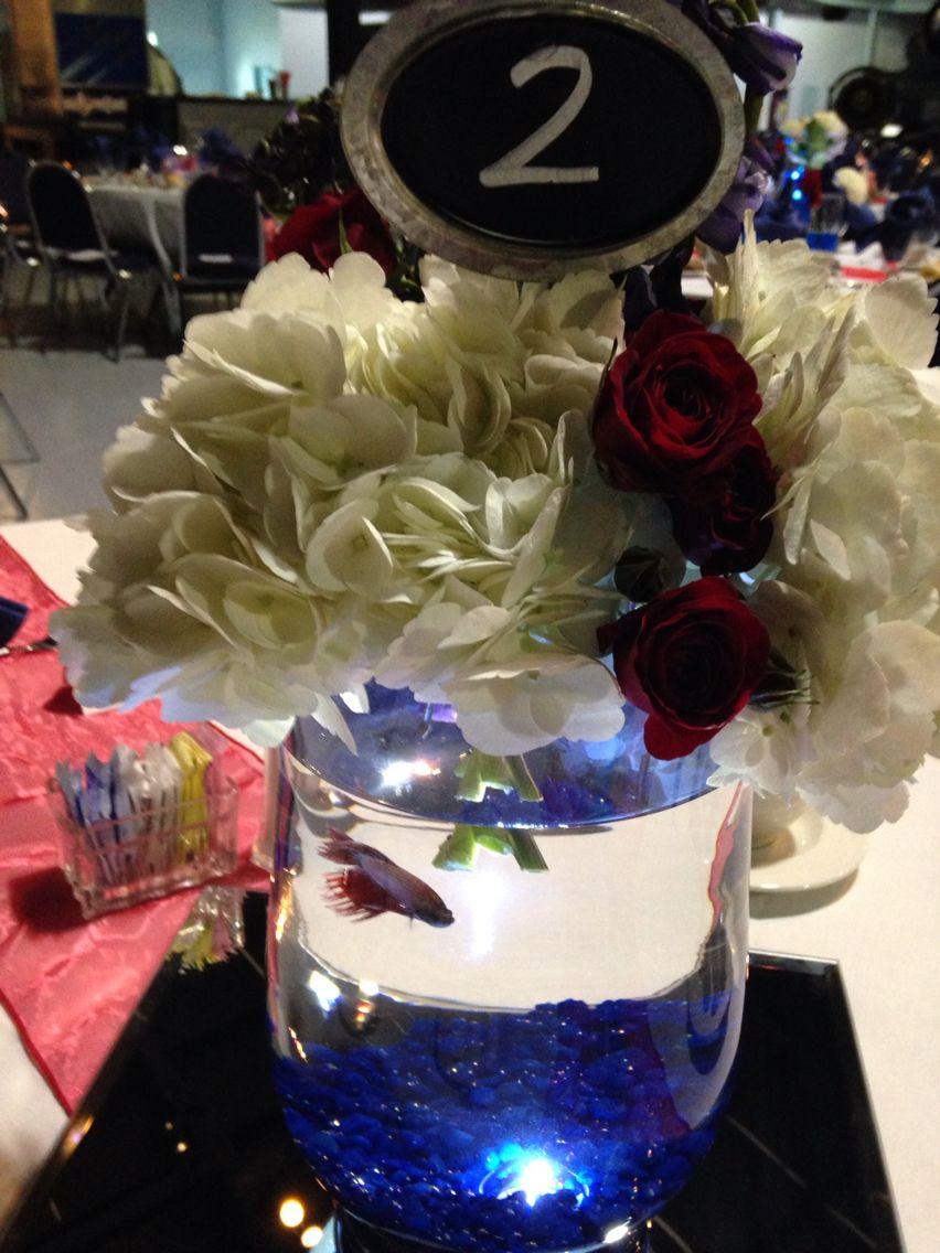 Centerpiece with Betta fish | Military Ceremony | Pinterest | Betta ...