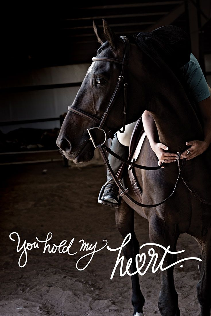 Whether you are ready to start showing, someone who just loves American Quarter Horses, or anywhere in between, AQHA is here to help you make the most of those moments. #YouHoldMyHeart