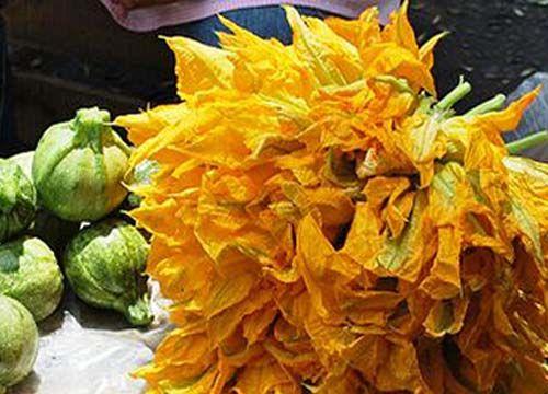 Caliente Orgánica Flor de Calabaza Recetas para un plato de fiesta y diversión