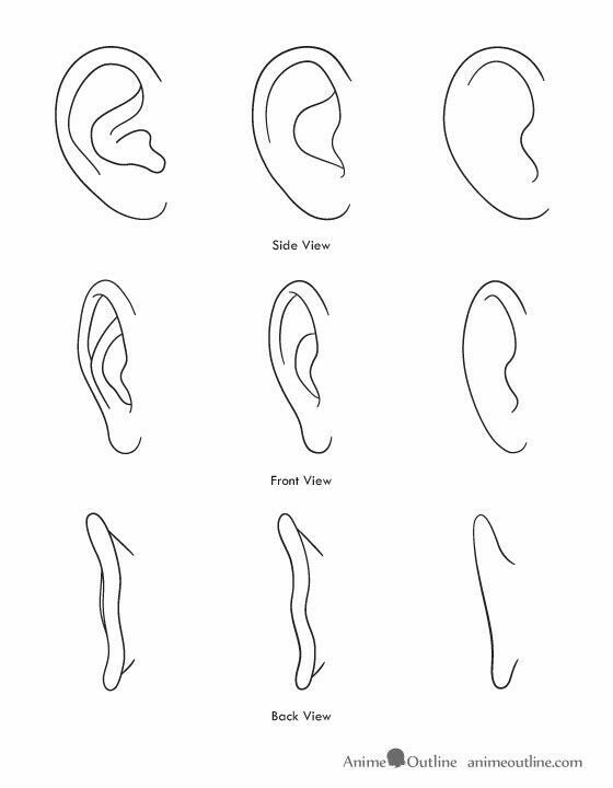 Ear Reference Anime Drawings Drawing Tips Anime Drawings Tutorials
