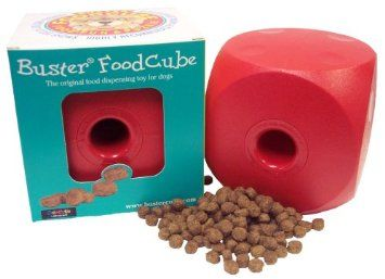 Amazon.com: Buster Food Cube Large Size (Colors May Vary): Pet Supplies