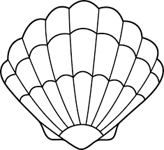 Image Result For Seashell Template Free Printable Seashell Drawing Seashells Template Shell Drawing