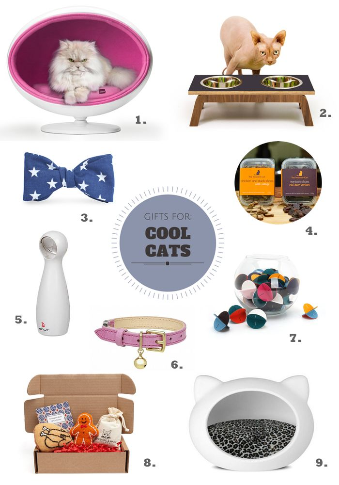 Luxury Christmas Gifts for Cool Cats #cat #cats #christmas #gifts ...