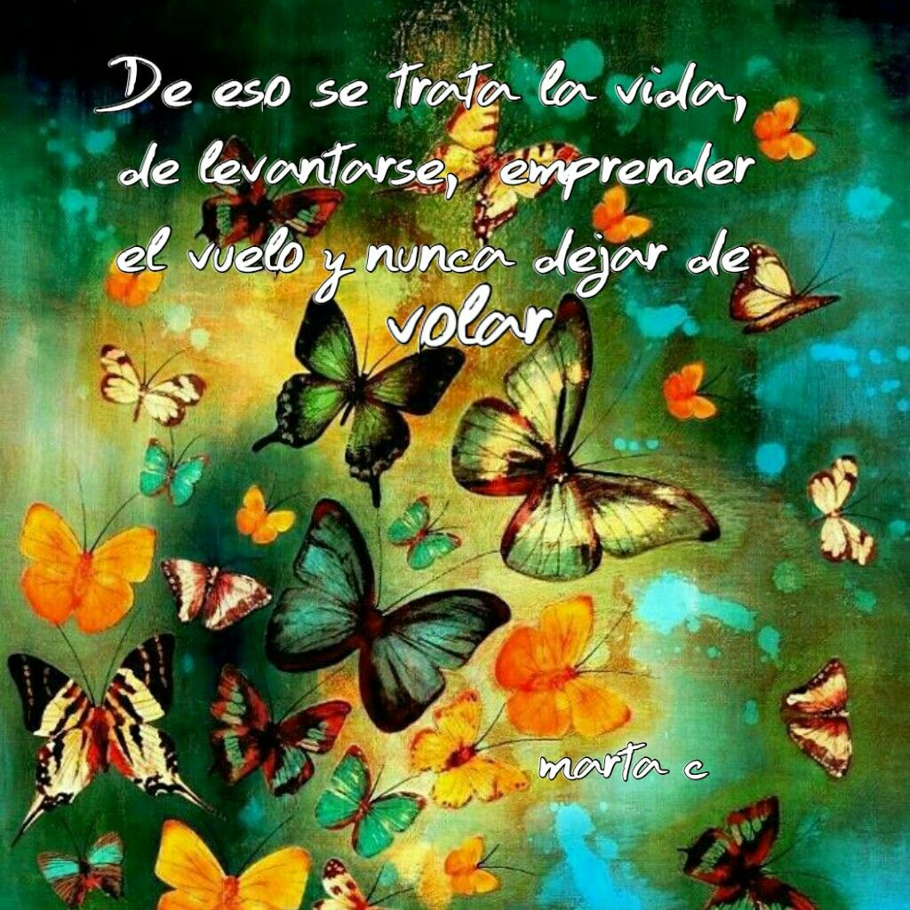 Pin by Marta C on mariposas frases positivas  Painting Art Prints
