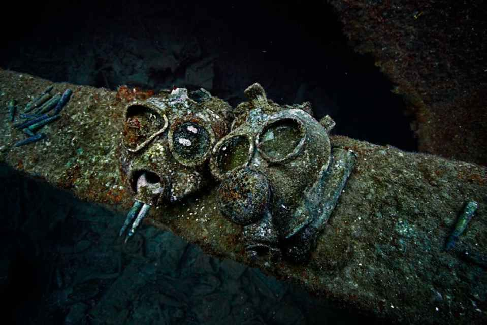 Amazing Things Divers Have Discovered At The Bottom Of The Ocean - 23 amazing things divers discovered bottom ocean