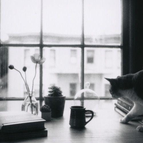 coffee interrupted  ^^ Hasselblad 500CM   Polaroid Back