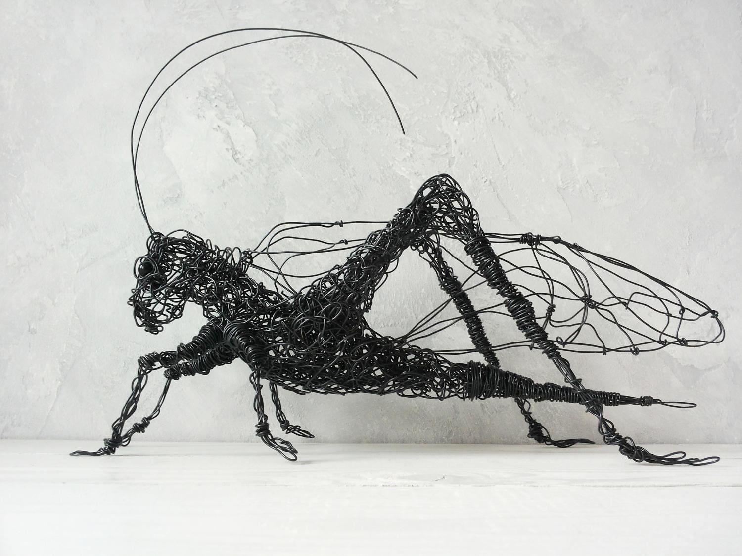 Awesome Wire Figures Insects Gallery - Wiring Diagram Ideas ...
