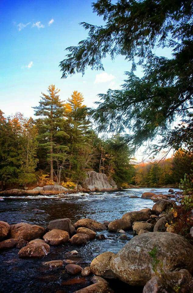What S Your Favorite Way To Enjoy A Crisp Autumn Day Nature Pictures Cool Pictures Of Nature Beautiful Landscapes