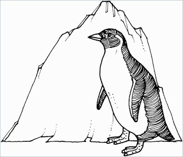 25 Marvelous Photo Of Penguin Coloring Page Coloring Pages To