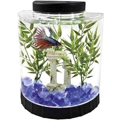 How To Decorate Fish Bowl Gold Fish Bowl Aquarium 4 White Led Light Half Moon Betta Tank