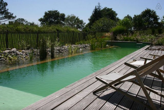 6 Homes Starring Stunning, All Natural Pools. Natural Swimming PoolsNatural  PoolsSwimming PondsVacation Home RentalsCool PoolsSummer VacationsBasque ...