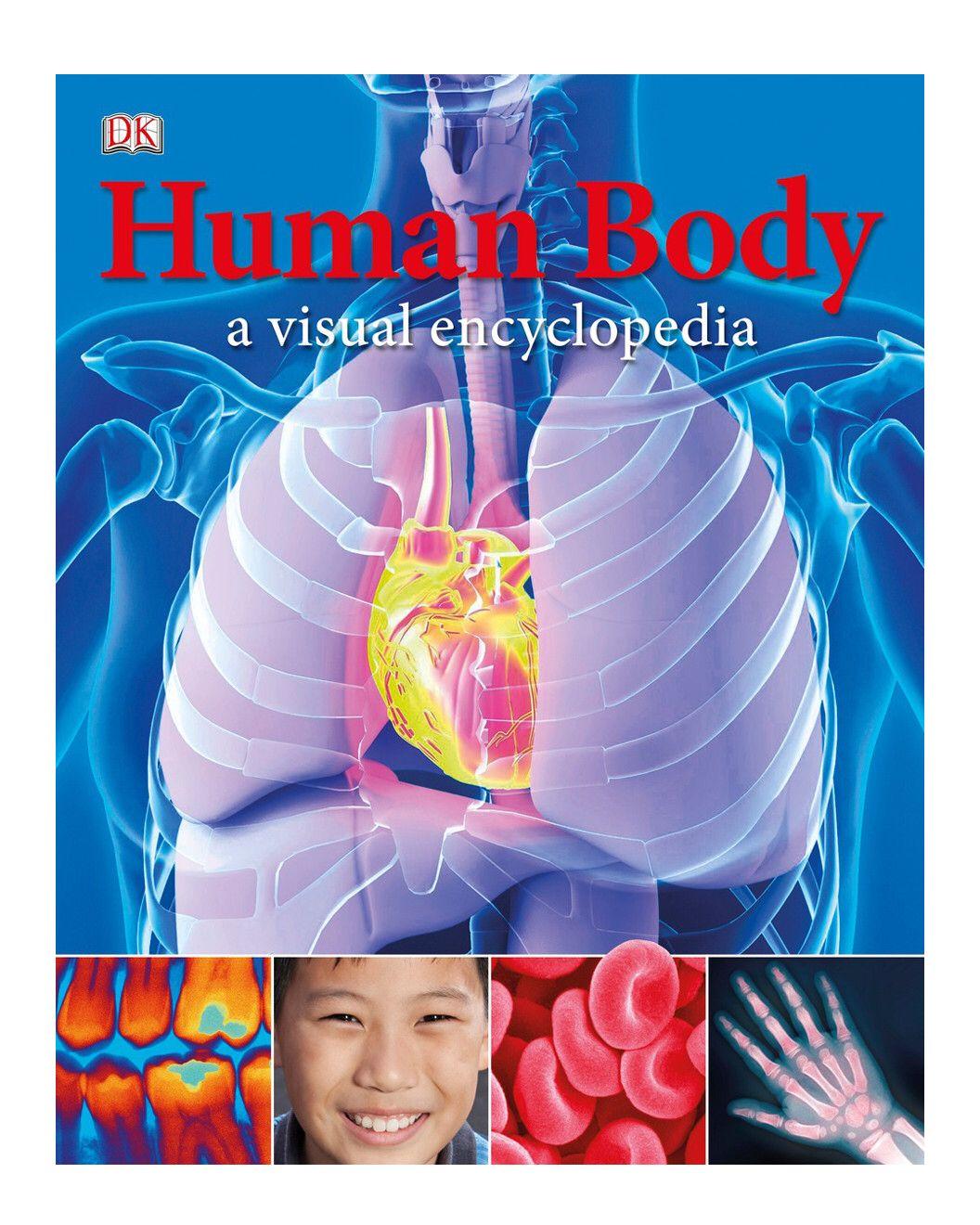 The Human Body A Visual Encyclopedia