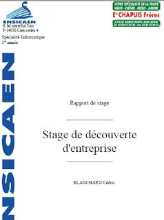 Exemple De Rapport De Stage Gratuit Exemple De Rapport De