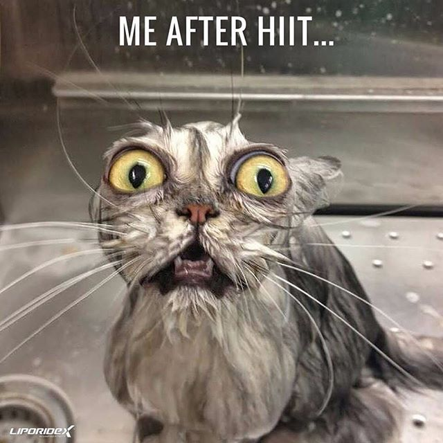 #HIIT #cardio got me like...