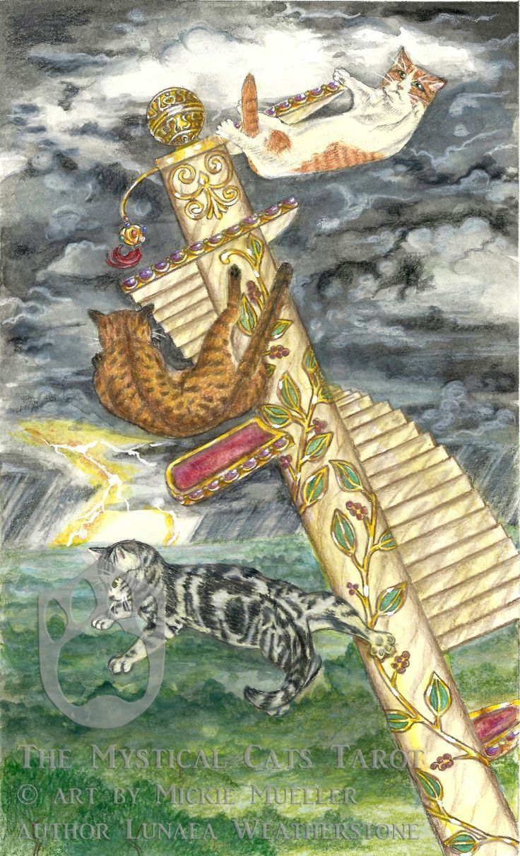 The tower from the mystical cat tarot   | Tarot & Oracle