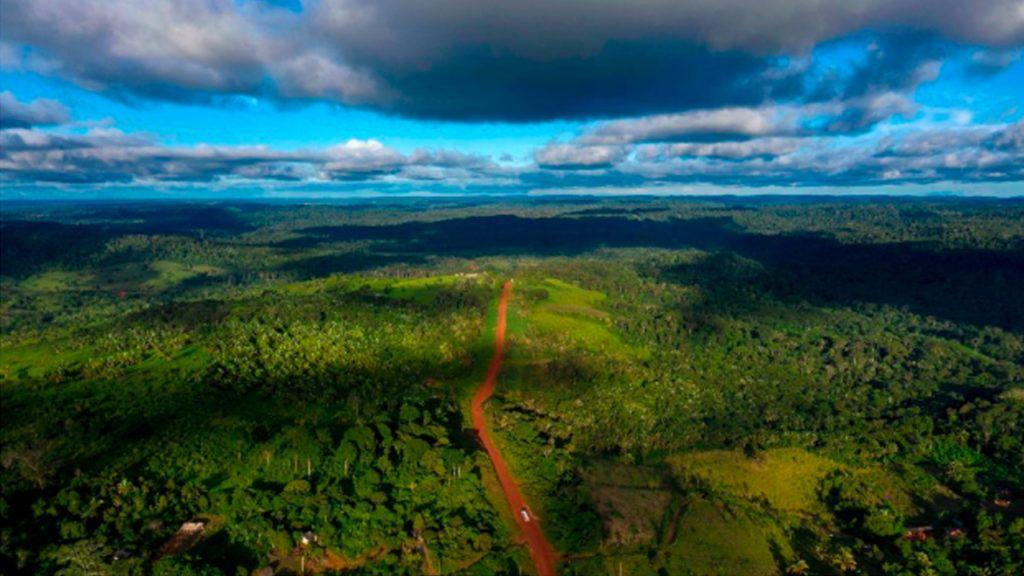 Amazon In Danger Of Total Destruction Under Brazil S Right Wing
