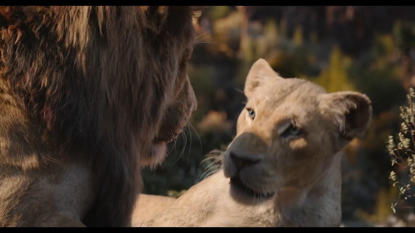 lion king 2019 stream # 13