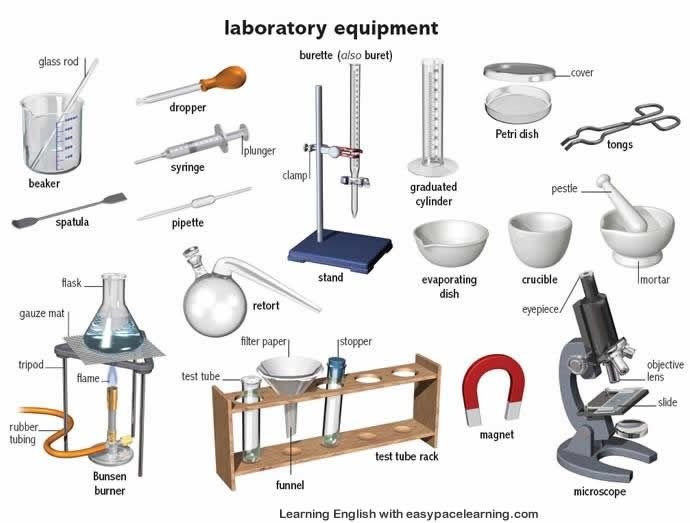 Learning the English words for laboratory equipment and their ...