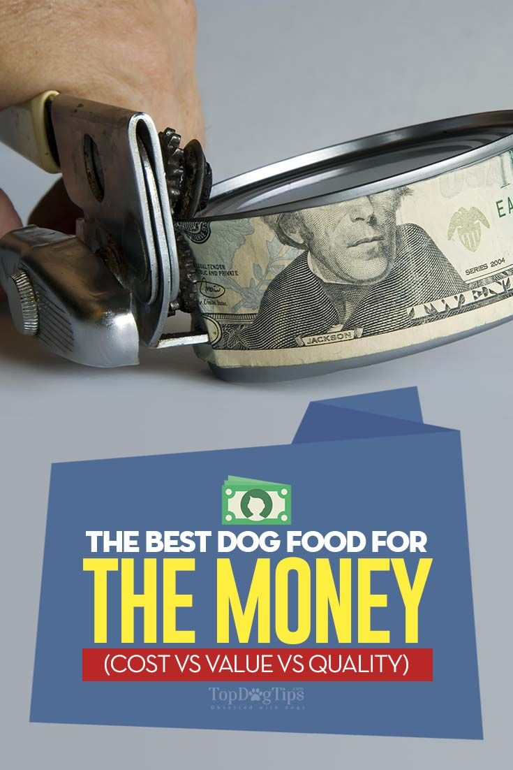 17 good dog foods for the money and worth their price tag
