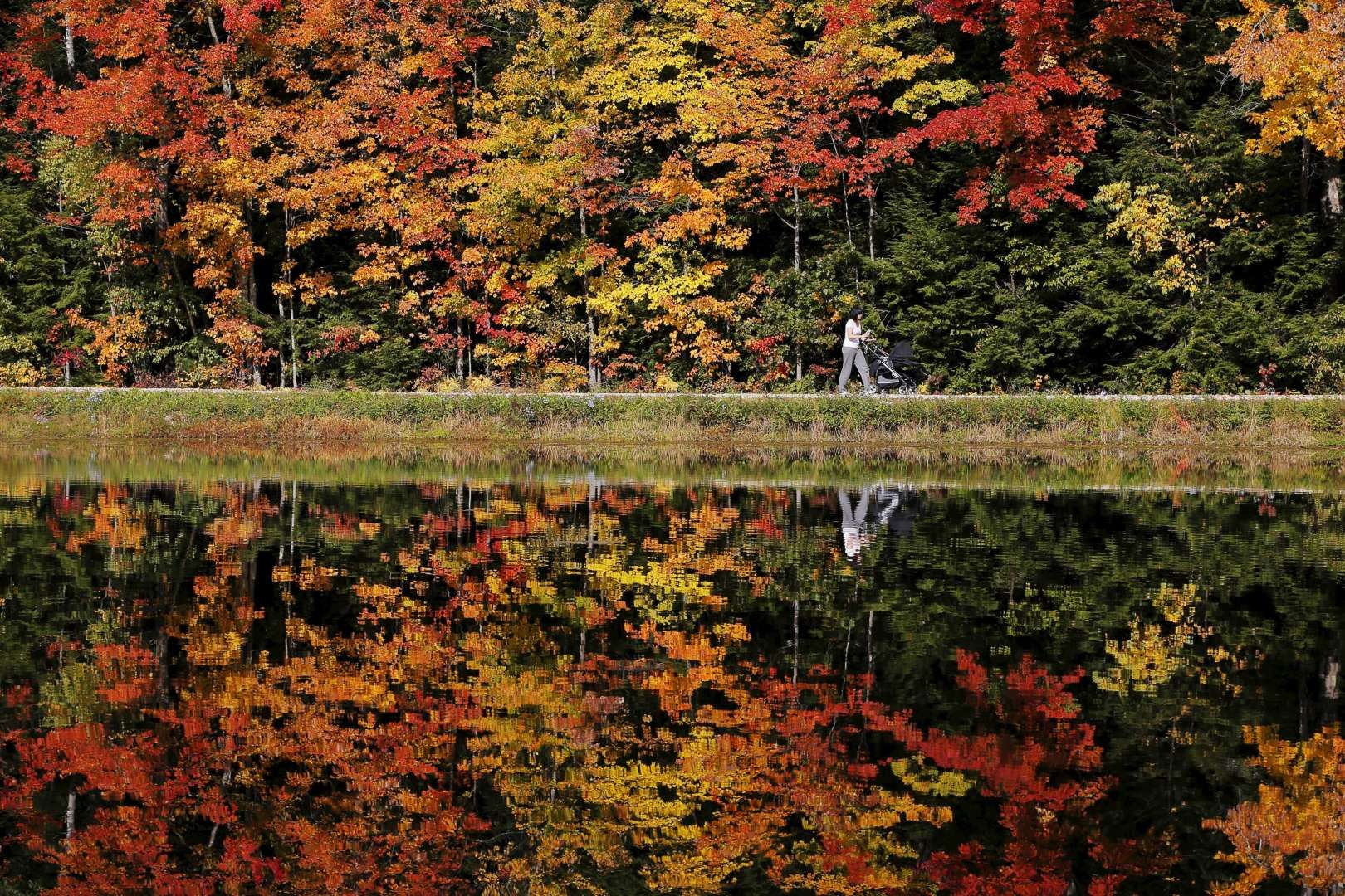 A woman pushes a baby stroller around Dream Lake amid fall foliage in Amherst, New Hampshire October... - BRIAN SNYDER/REUTERS
