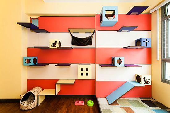 magnifique ils transforment leur maison en paradis pour chats animaux pinterest paradis. Black Bedroom Furniture Sets. Home Design Ideas