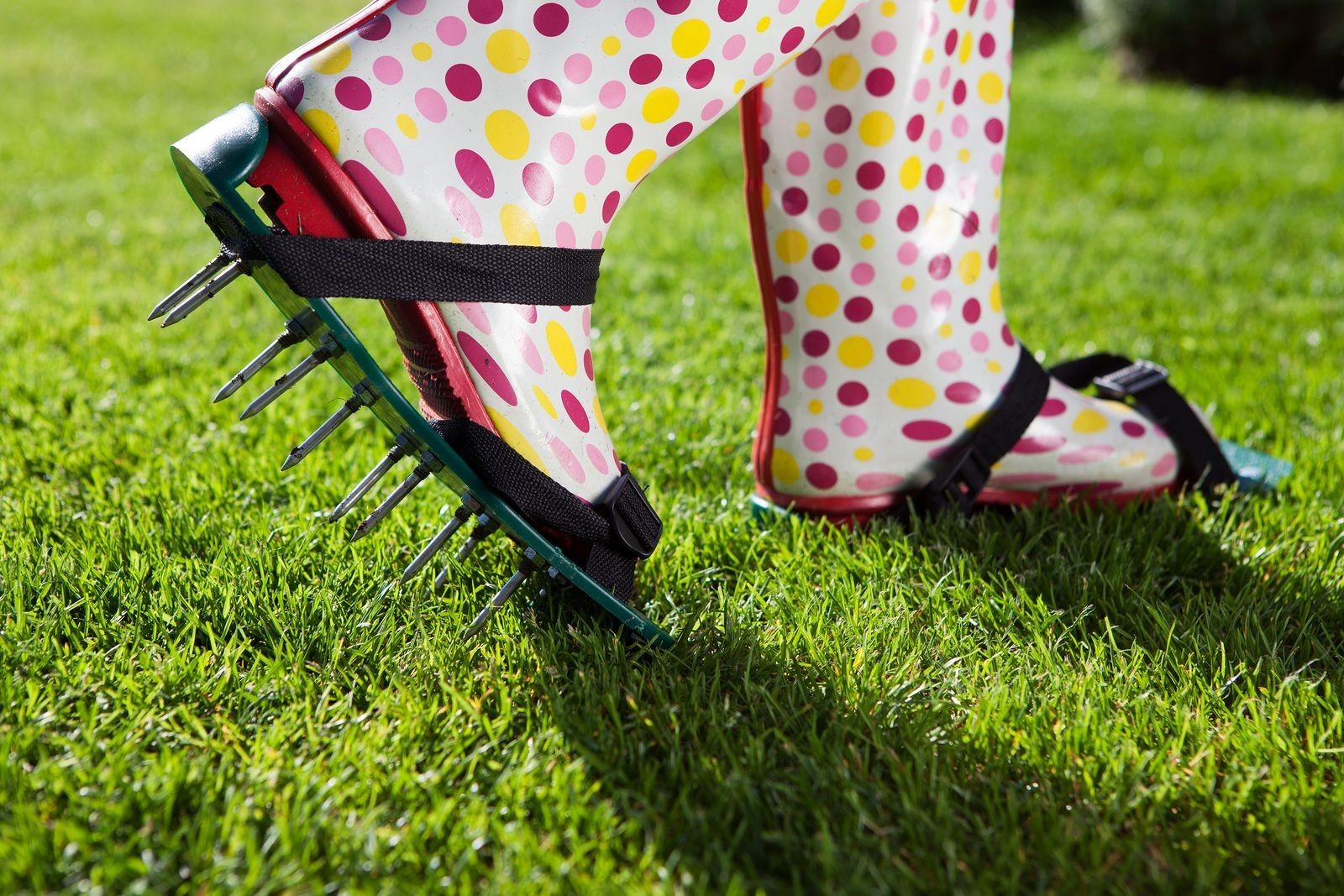 Your Yard Will Tell You When To Hire A Lawn Care Service For Aeration