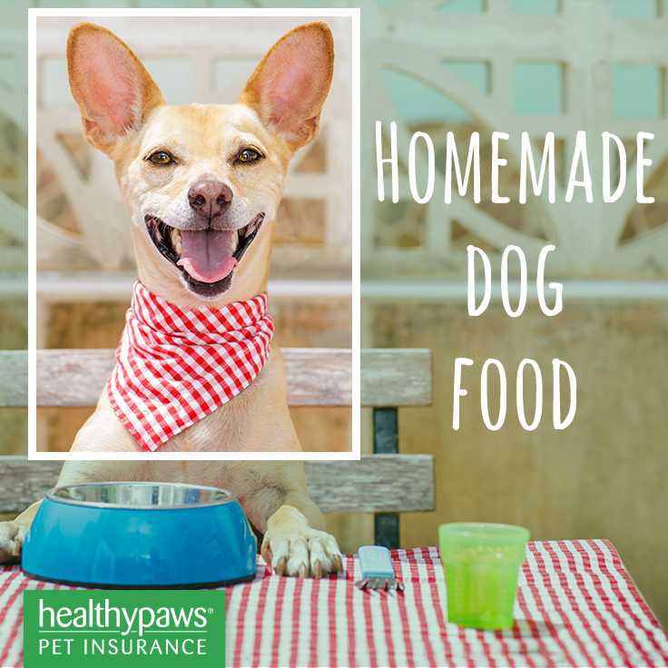 Pin By Healthy Paws Pet Insurance On Homemade Dog Food Homemade