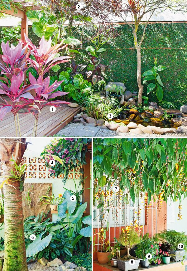 Be Inspired By This Beautiful Tropical Garden With Over 30 Plants Plant List Paisagismo Tropical Jardim Tropical Decoracao Jardim