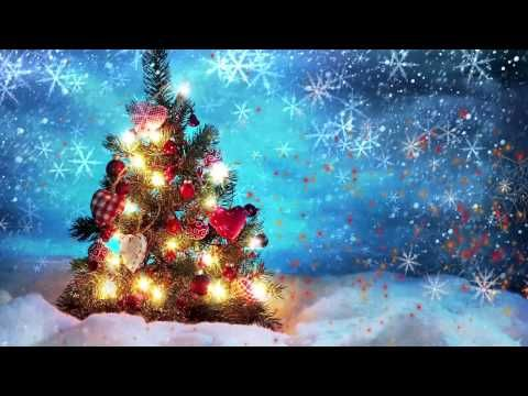 Christmas Animated Video Background Loop Youtube Christmas Tree Wallpaper Cute Christmas Tree Beautiful Christmas Trees