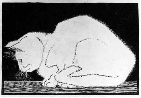 White Cat woodcut print    by M. C. Escher