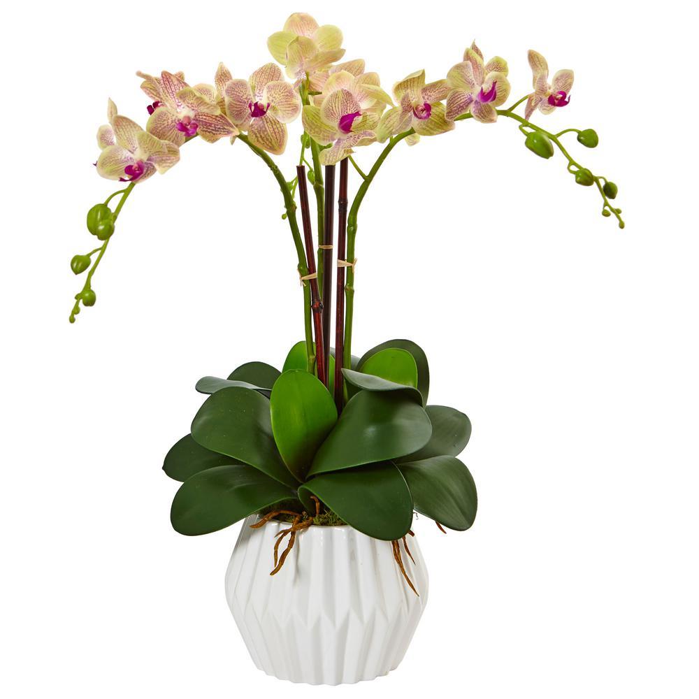 Indoor Phalaenopsis Orchid Silk Arrangement In White Vase Ivory Orchid Orchid Arrangements Artificial Orchids Artificial Flowers