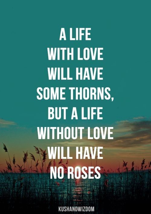3 Life Is A Rose 7 Passionate Quotes About Love Love