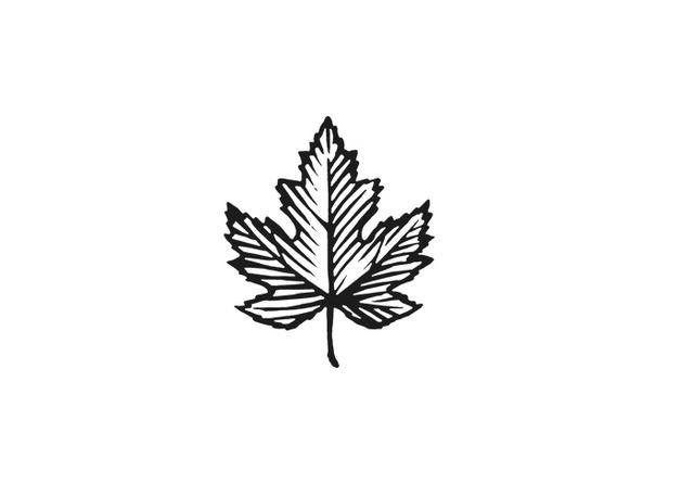 Steven Noble Illustrations Maple Leaf Icon Tattoos Maple Tree Tattoos Maple Leaf Tattoos