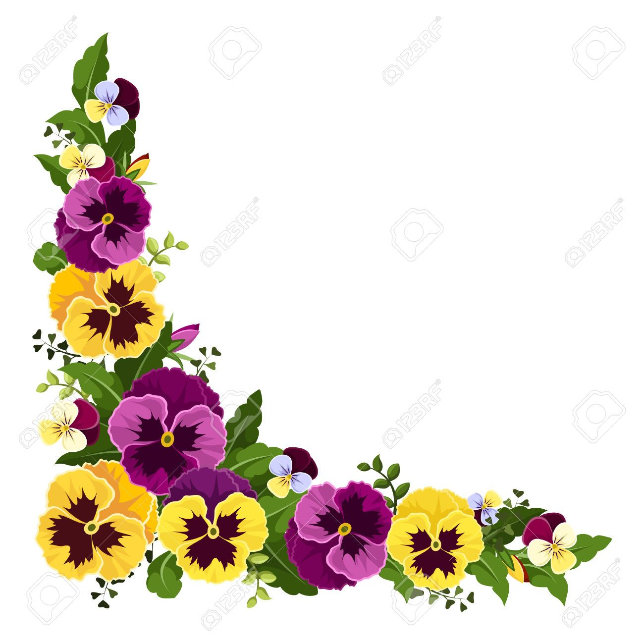 pansy flower clipart google search flower vine borders rh pinterest ie pansy clipart free yellow pansy clipart