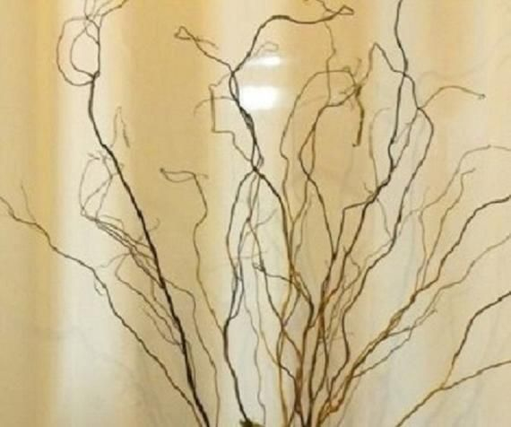 3' Curly Willow Branches For Home And Wedding