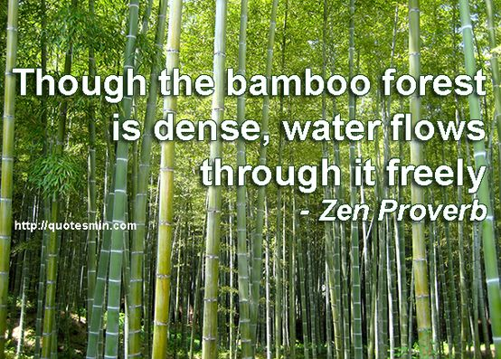Pin By Music On Zen Zen Proverbs Proverbs Quotes