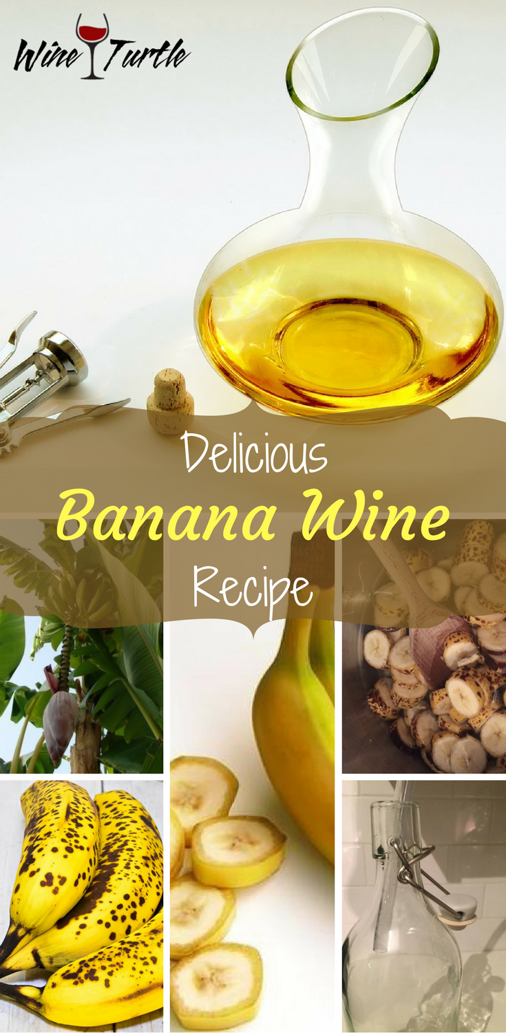 Having a hard time finding a delicious banana wine recipe? Wine Turtle has the answer!