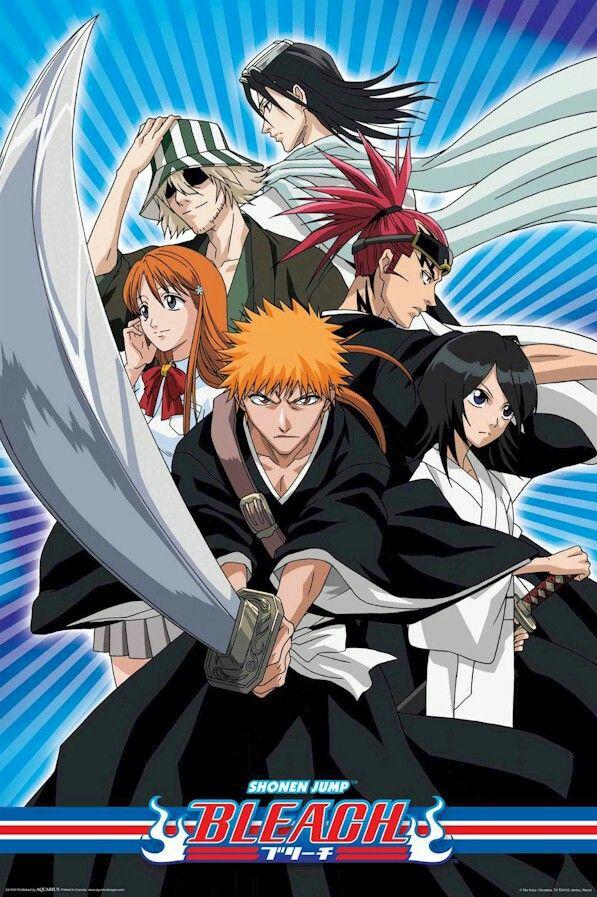Bleach Saison 2, Les saisons et Anime