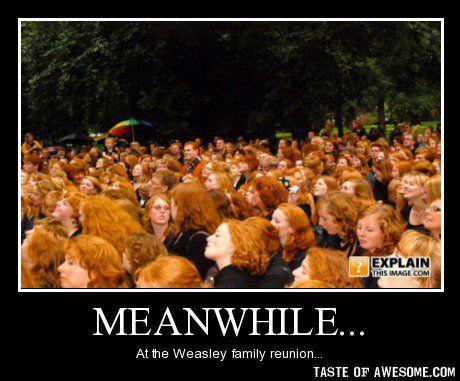 Weasley family reunion