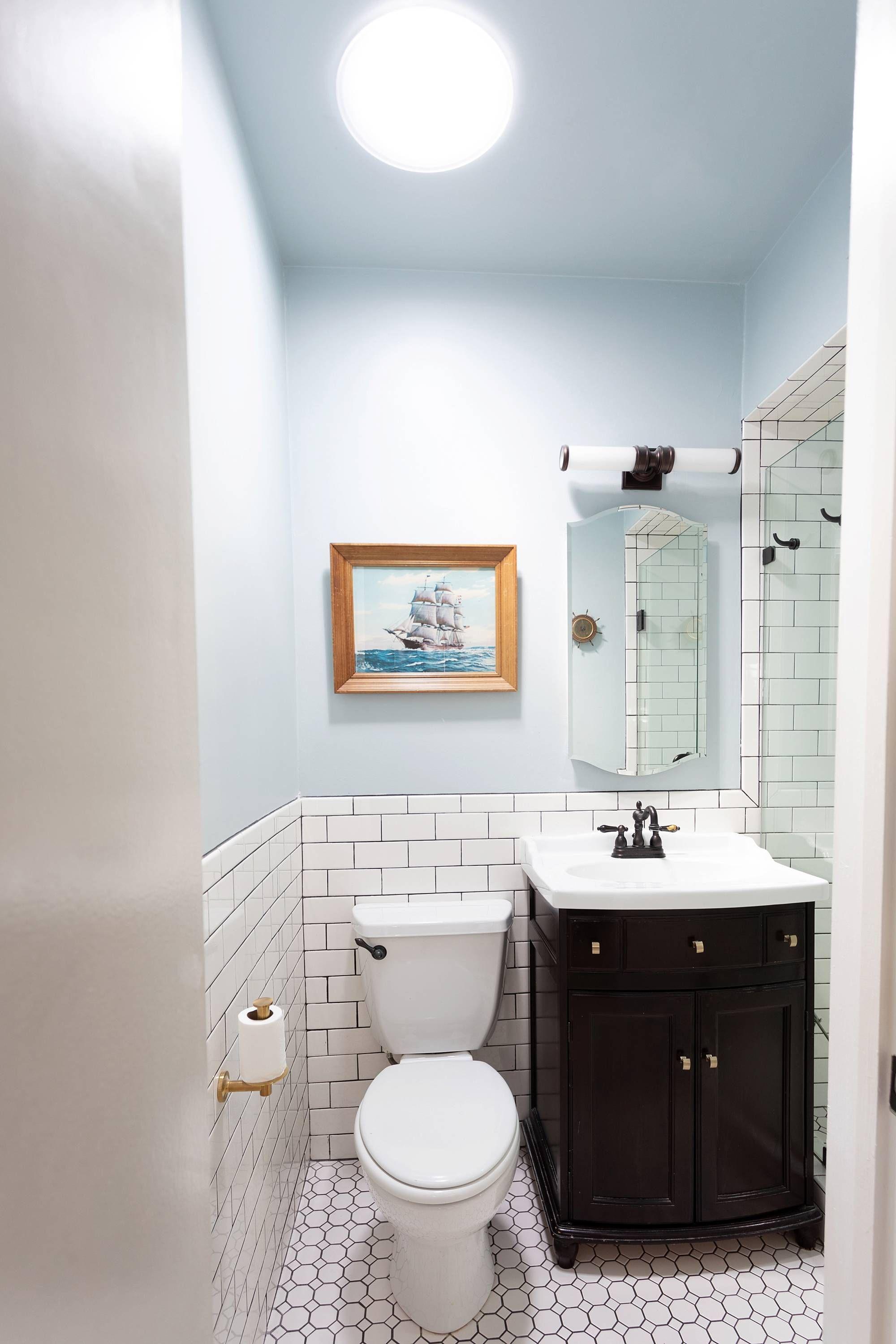 14 Plants For Windowless Bathroom Bathroom Plants Decor Best Bathroom Plants Plants