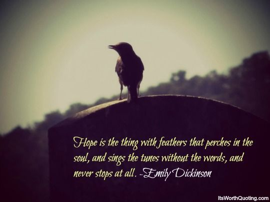 Quotes About Hope Hope  Emily Dickinson Quote  Inspiration  Pinterest  Emily