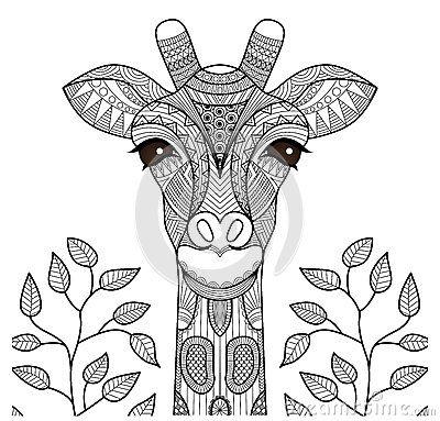 Cabeza de la jirafa de Zentangle | DFA | Pinterest | Zentangle ...