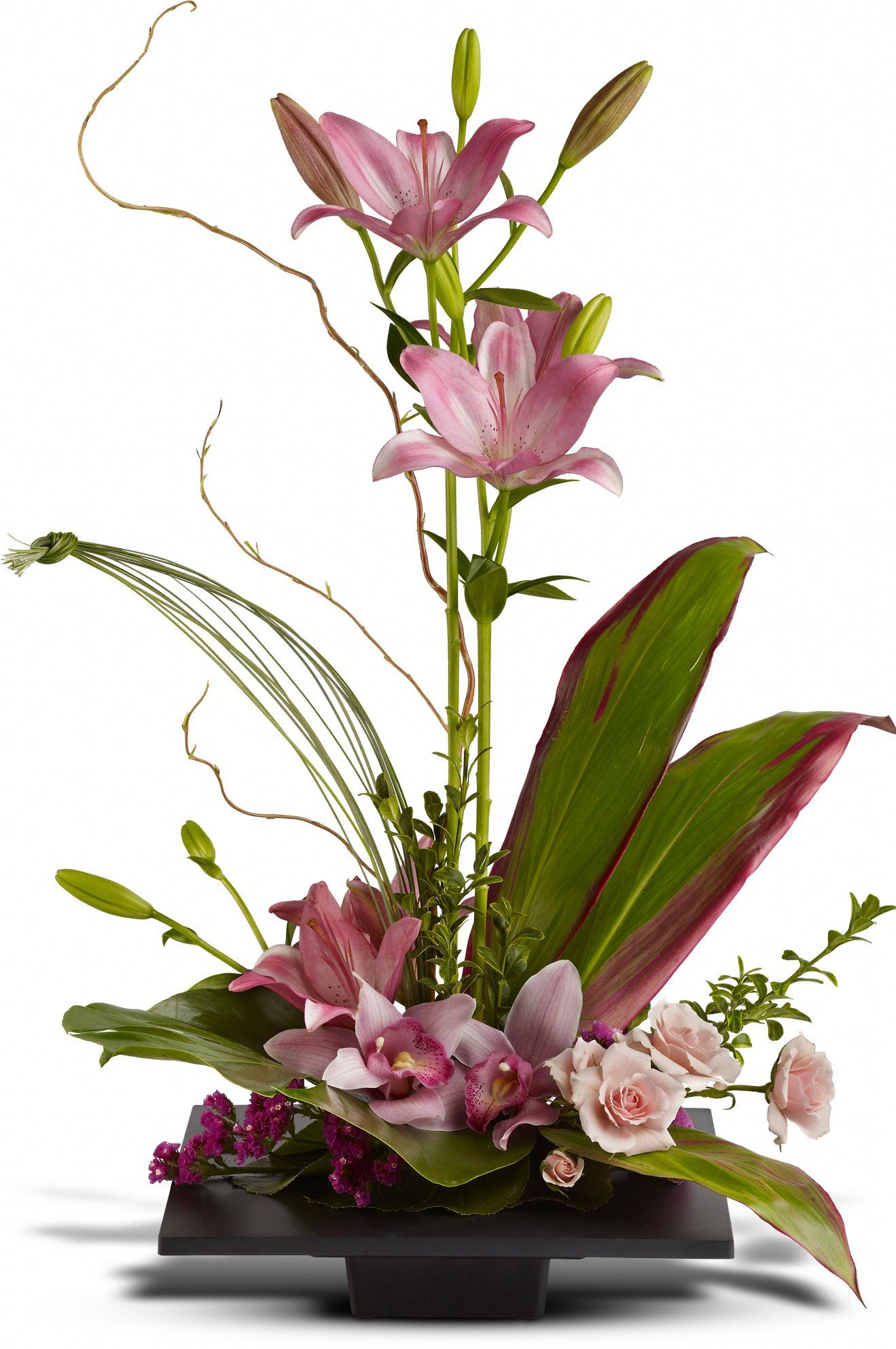 With this unique arrangement, you are showing admiration, sweetness, playfulness, and long-lasting relationships/friendships. ---- @Teleflora
