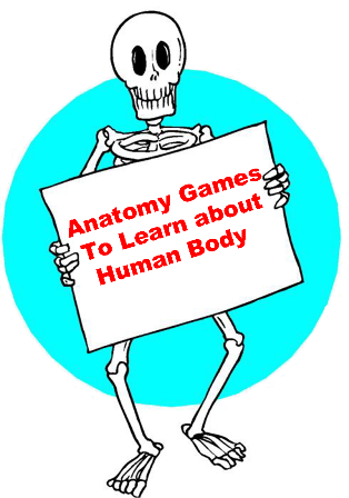 Fun And Interesting Anatomy Games For To Kids Learn About Human Body