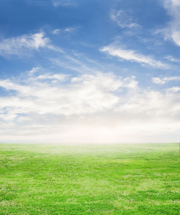 Download Fresh Grass With Sky Background For Free Photoshop Landscape Landscape Background Sky Photoshop