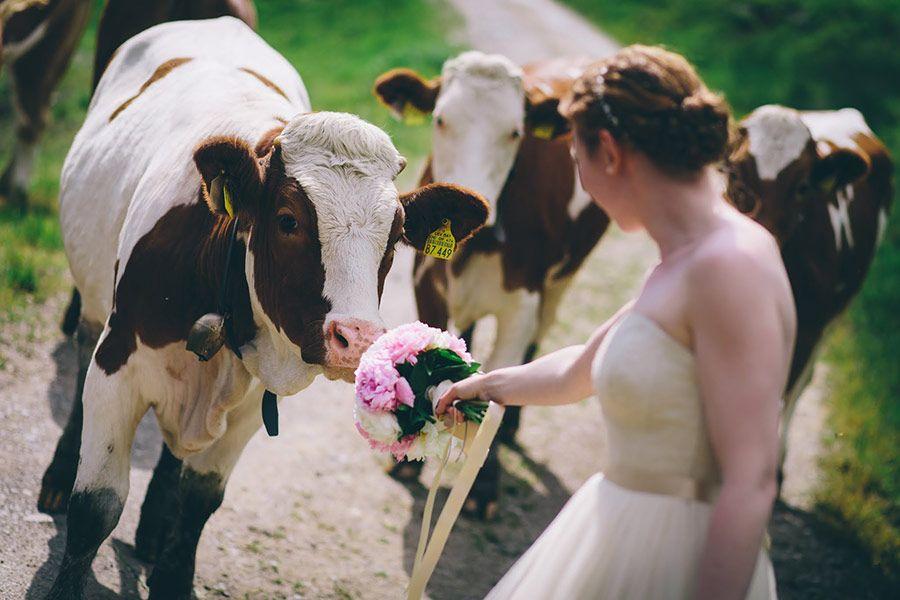 Gunstig heiraten in bayern